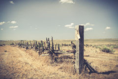 ©2011 Mike Temple Photography | Texas Panhandle
