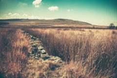 ©2012 Mike Temple Photography | Dry stone wall