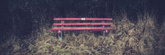 ©2012 Mike Temple Photography | Red Bench
