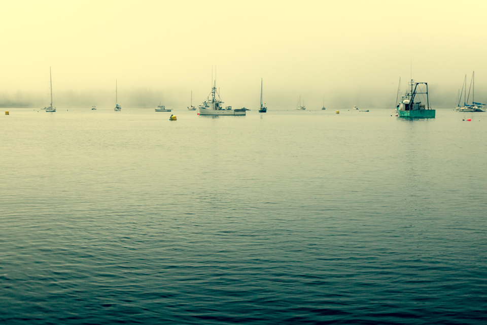 Moorings in the mist